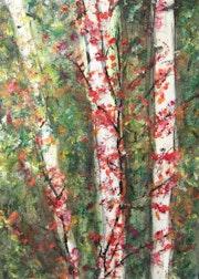 White Birch in Fall. Michela Curtis