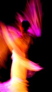 Flamenco 2. Mallis