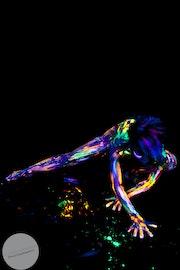 Black Light Impressionism Mariel 2. Marc Mercier Photography