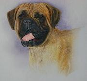 Portrait de chien.