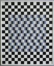 Illusions d'optique. Michel Robardet