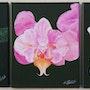 Les orchidées. (Triptyque). Ghislaine Phelut