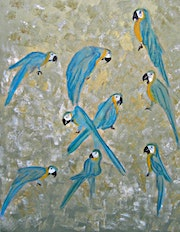Gold and Blue Macaws. Michela Curtis