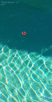 Pétale flottant.