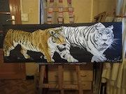 Les tigres.