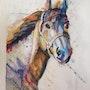 Le cheval dans toute sa splendeur. Domy