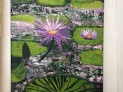 Fleurs de lotus.