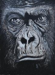 Gorille (73cmx54cm).