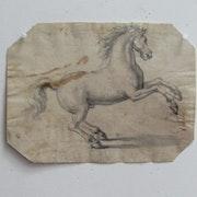 Cheval : étude de la position cambrée, XV - XVIe siècle.. Historien d'art, Archéologue; Chercheur Free-L.