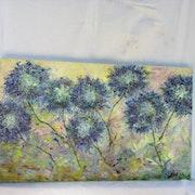 Les belles agapanthes bleues de mon jardin ´~´~´~´~´~.