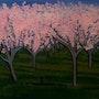 Verger (Orchard). Alison Quaid