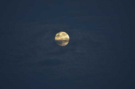 Nuit de pleine lune 3. Sylvie B Mite02