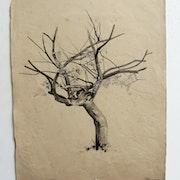 T. Foujita : arbre en hiver. (Attribué à).. Historien d'art, Archéologue; Chercheur Free-L.