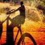 Biking 2. Xenart