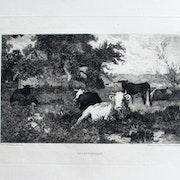 .Van marcke Émile : Un coin d'herbage.. Historien d'art, Archéologue; Chercheur Free-L.