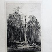 De. Bellée : Une coupe en forêt.. Historien d'art, Archéologue; Chercheur Free-L.