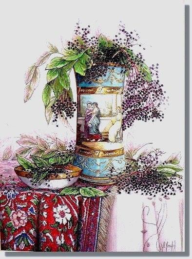 Elegant Eldeberries. I, Joseph Ms.