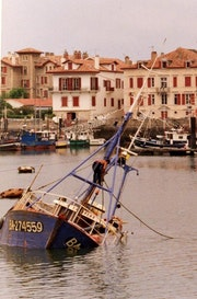 La sardine…. Elie