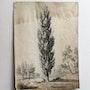 Bertin : Arbres. 1829.. Historien d'art, Archéologue; Chercheur Free-L.