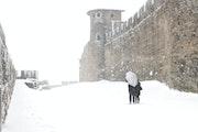 Carcassonne sous la neige - cn16.