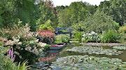 Le jardin van Deek. Patrick Collinet