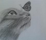 T'es qui Papillon.