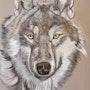 Loup n°3. Paul Barbier