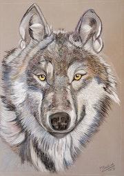Loup n°3.