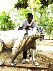 Tigre en métal inox au senegal. Yanda Sow