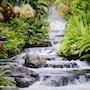 La chanson des Cascades. Didier Collignon