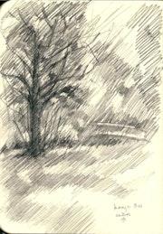 Haagse Bos (The Hague Forest) - 31-07-13. Corné Akkers Kunstwerken
