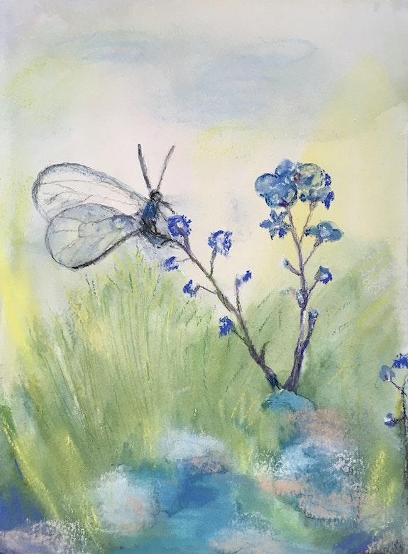 Papillon…. Marie Claude Lambert Marie-Claude Lambert