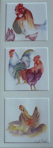 Coqs et poules.
